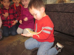 Michael made a new friend at Alexs fifth birthday party. He was very brave in holding a lot of the animals. Even snakes.